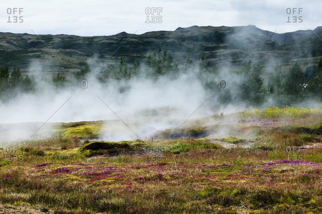 Geothermal activity in iceland. Wide shot.