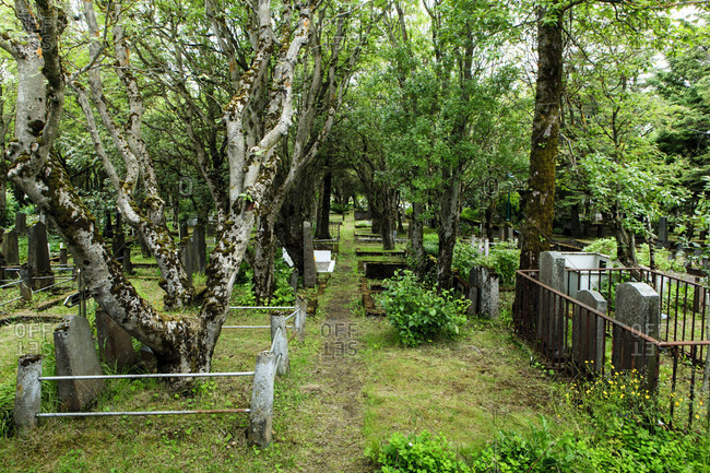 Old cemetery in reykjavik, iceland,
