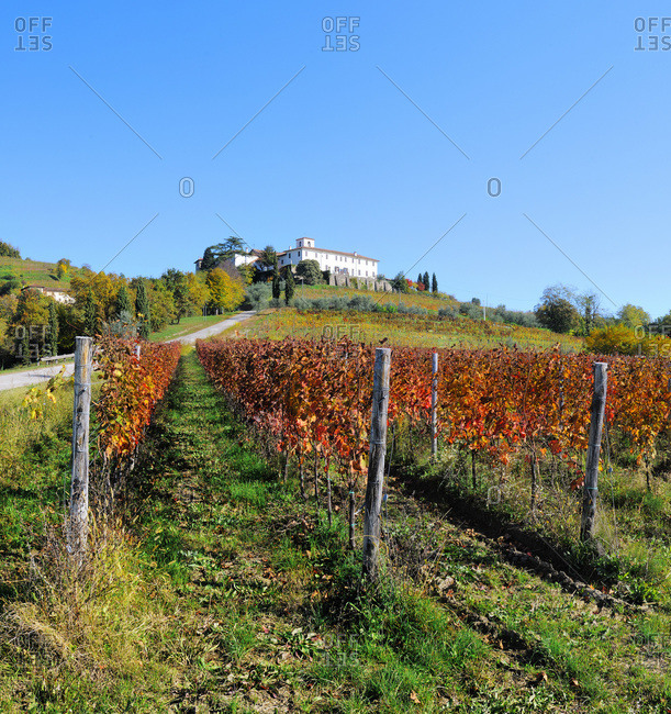 Italy - September 9, 2020: Vineyards and Rosazzo Abbey in background