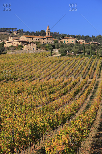 Italy - October 23, 2018: Autumn colored vineyards surrounding San Gusme village