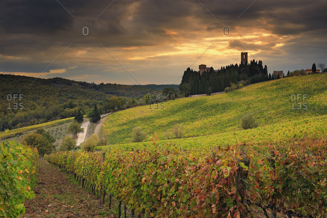 Italy - October 26, 2018: Autumn colored vineyards surrounding Badia a Passignano village and its medieval abbey
