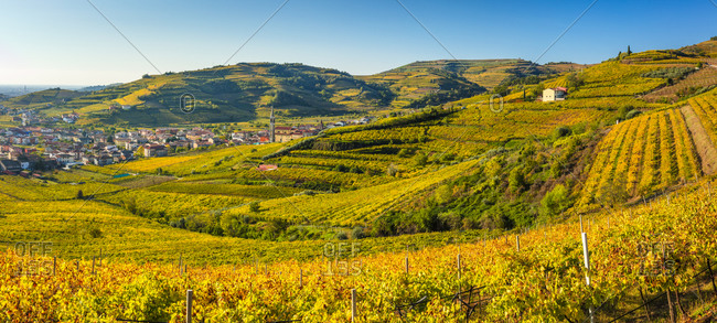 Italy - November 18, 2018: Costalunga locality, vineyards