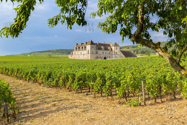 France - September 18, 2018: Chateau Clos de Vougeot and vineyards along the Route des Grands Crus