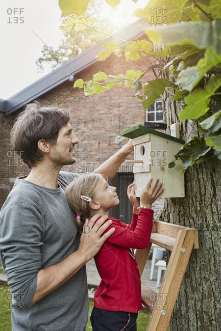 Father and daughter hanging up nest box in garden