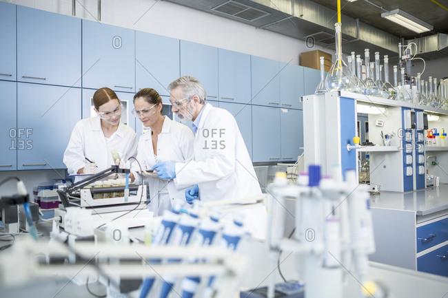 Three scientists in lab examining samples