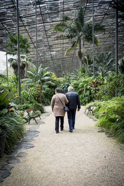 Couple walking in botanical garden glasshouse