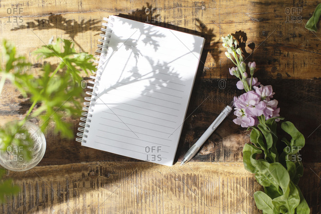 Leaf shadow on notebook - Offset