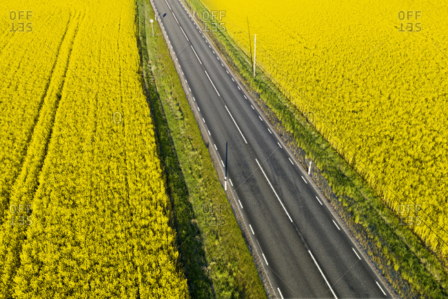 Aerial view of country road and fields