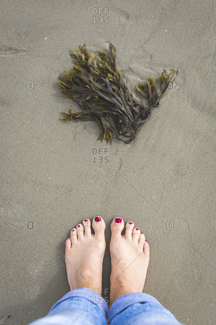 Bare feet of woman standing in front of seaweeds lying on beach sand