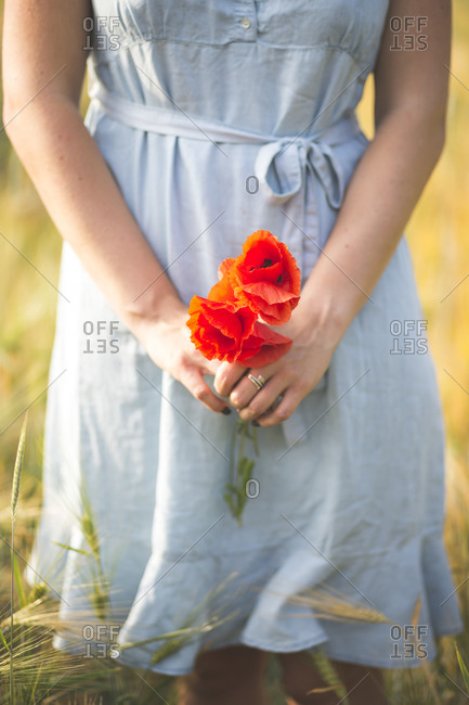 Young woman holding poppy flower while standing in agricultural field