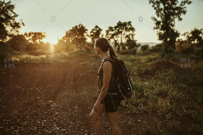 Female trekker looking at sunset view while standing in forest