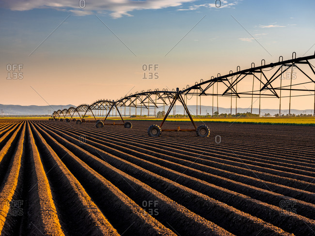 Irrigation system in agricultural field during sunset