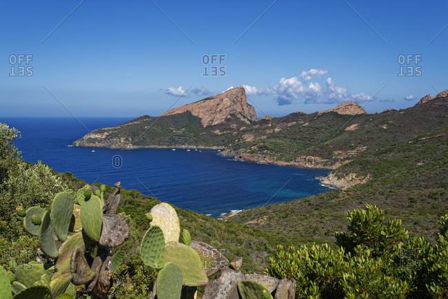 France- Corse-du-Sud- Piana- Scenic view of Gulf of Porto and Calanques de Piana in summer
