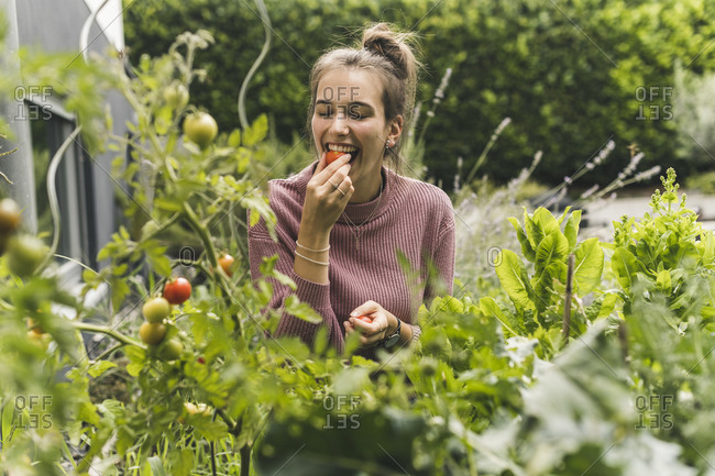 Happy young woman eating cherry tomato amidst plants in community garden