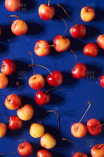 Close up of cherries on a blue surface