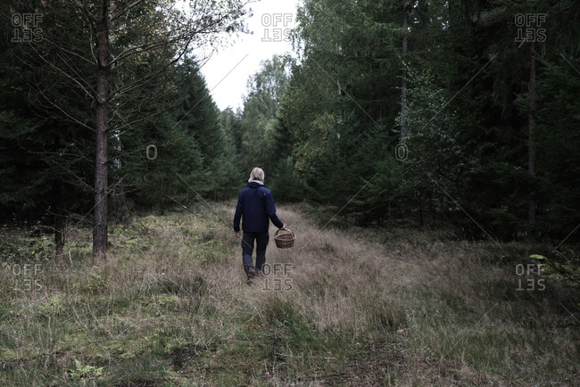 Man foraging for mushrooms in the forest