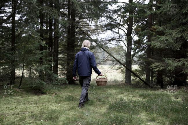 Man walking in the woods looking for mushrooms