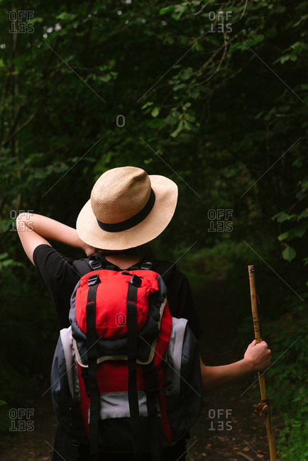 Back view of female tourist with backpack standing in dark woods in summer and resting during vacation