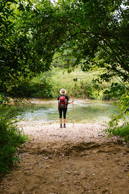 Back view of faceless tourist with backpack and wooden stick standing near clear pond in forest and admiring natural landscape