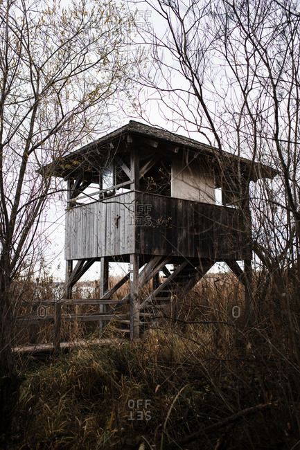 Low angle of small aged lumber shed on stilts located among leafless trees and bushes in autumn countryside