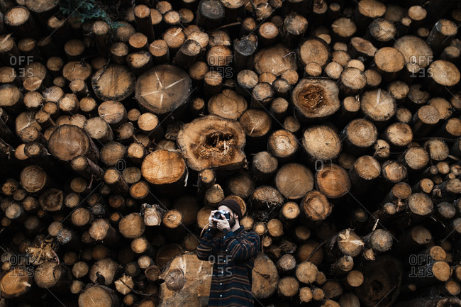 Unrecognizable male photographer with photo camera shooting picture while standing against stacked wooden logs during travel in autumn woodland