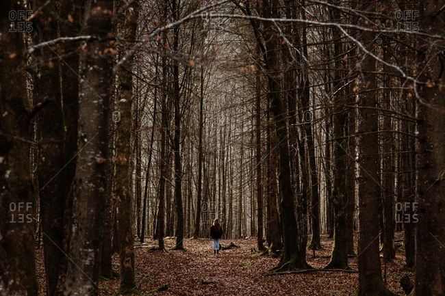 Back view of unrecognizable female traveler in warm clothes walking on path covered with dry leaves in silent autumnal forest with bare trees
