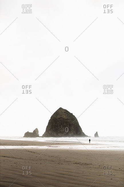 Distant view of unrecognizable person walking along foamy beach near sea on overcast day