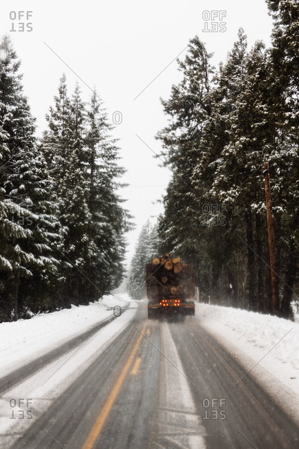 Truck loaded with wooden logs driving on asphalt roadway among snowy coniferous woods in winter day in USA