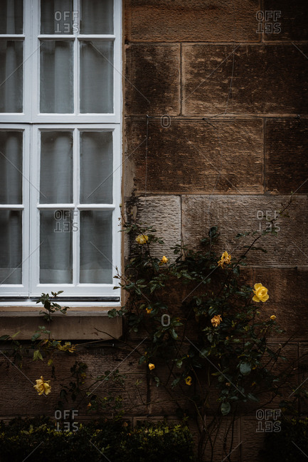 Detail of exterior of shabby residential building in autumn on street in Scottish Highlands
