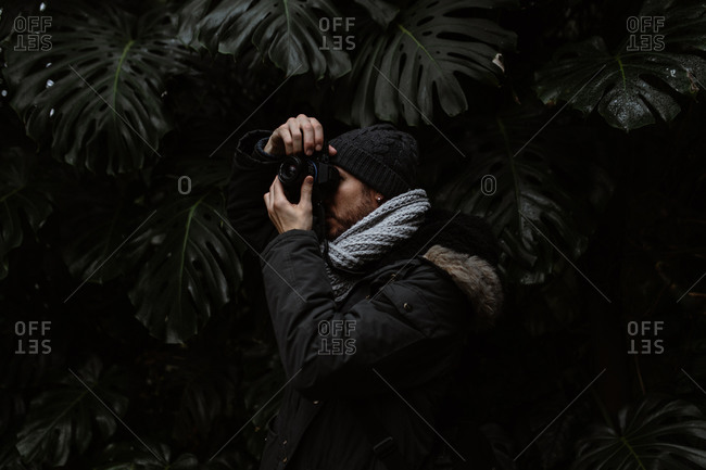 Side view of unrecognizable photographer standing in glasshouse and taking picture of exotic plant in Scottish Highlands