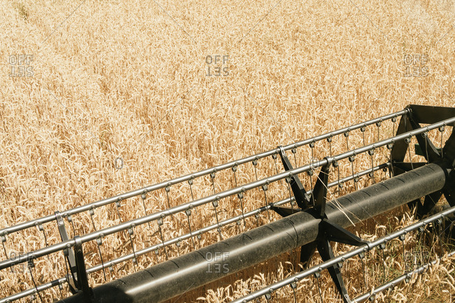 Metal reel of modern combine harvester located in golden wheat field in countryside on sunny day