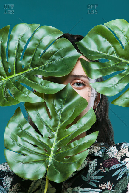 Young female model hiding face behind green monstera leaves looking at camera in studio with turquoise background