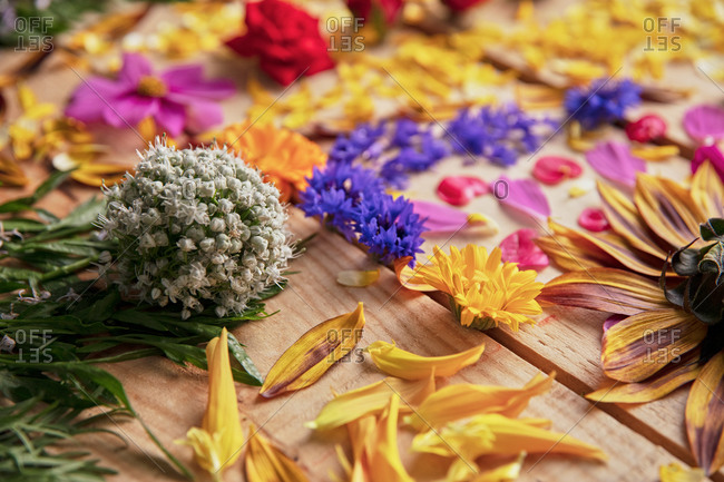 Closeup of fragrant flower buds and delicate petals arranged on rustic wooden table
