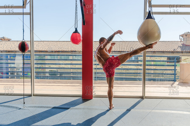 Side view of muscular male kickboxer with naked torso practicing kicks on punching bag during intense training in gym