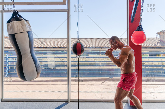 Side view of determined male boxer in boxing gloves punching heavy bag during intense workout in gym