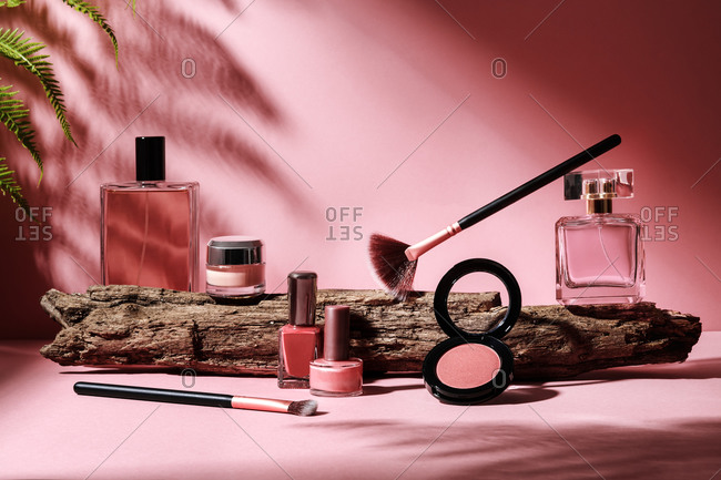 Composition of assorted decorative cosmetic products placed on pink background with fern leaf and wooden branch