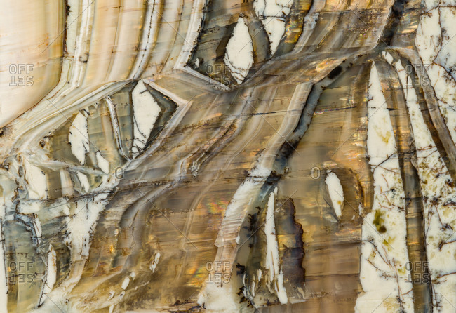 Macrophotograph of the structural detail in a pietersite gemstone from Arizona. Also known as 'Arizona tiger eye' it is a variety of chalcedony that contains amphibole mineral fibers that result in a chatoyant optical reflectance effect.