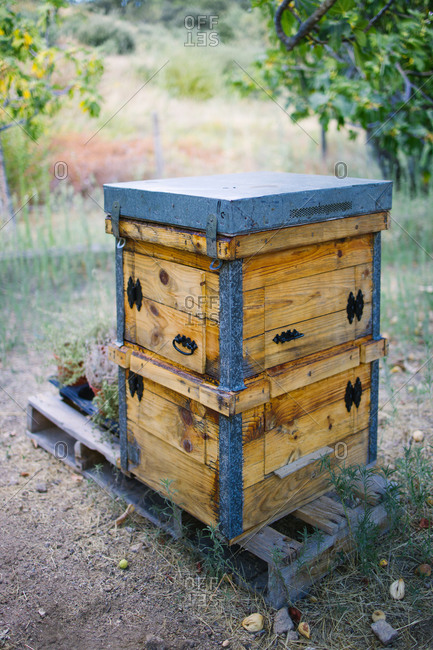 Hive with wooden exterior placed in green summer garden in apiary in countryside