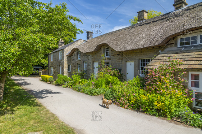 View of thatched cottages in Baslow, Derbyshire Dales, Derbyshire, England, United Kingdom, Europe