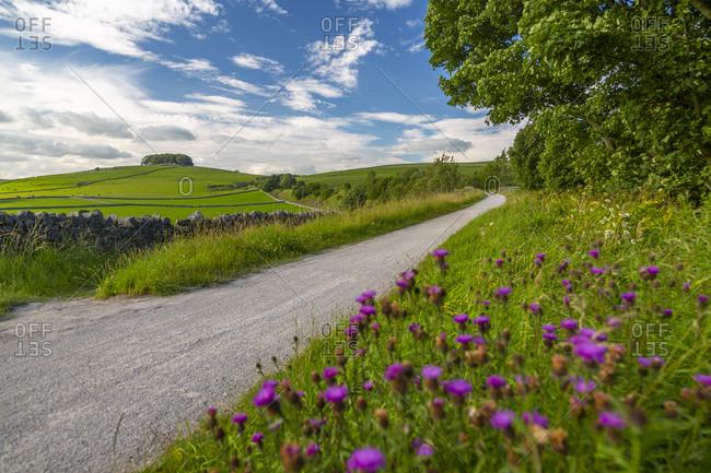 View of the Tissington Trail near Biggin, Ashbourne, Derbyshire, England, United Kingdom, Europe