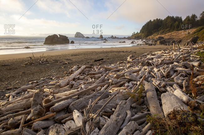 Driftwood piled up by the high tide on Hidden Beach, Klamath, California, United States of America, North America
