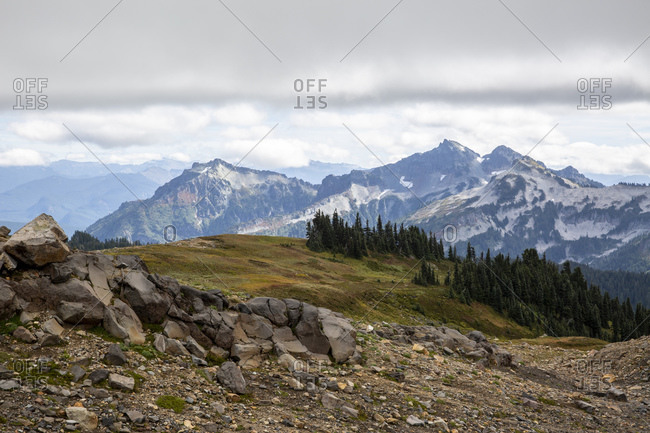 View of the Deadhorse Creek Trail, Mount Rainier National Park, Washington State, United States of America, North America