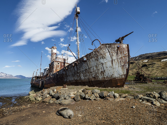 November 17, 2019: Rusting catcher boat at the abandoned Norwegian whaling station at Grytviken, East Cumberland Bay, South Georgia, Polar Regions