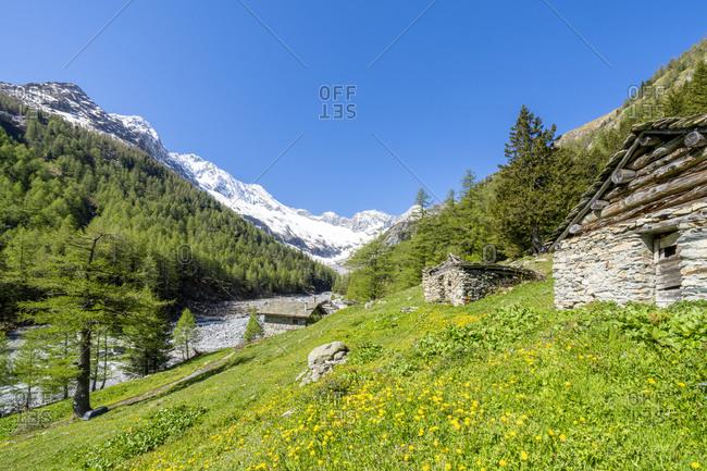 Stone huts in green meadows of Alpe Laresin with Monte Disgrazia on background, Chiareggio Valley, Valmalenco, Lombardy, Italy, Europe