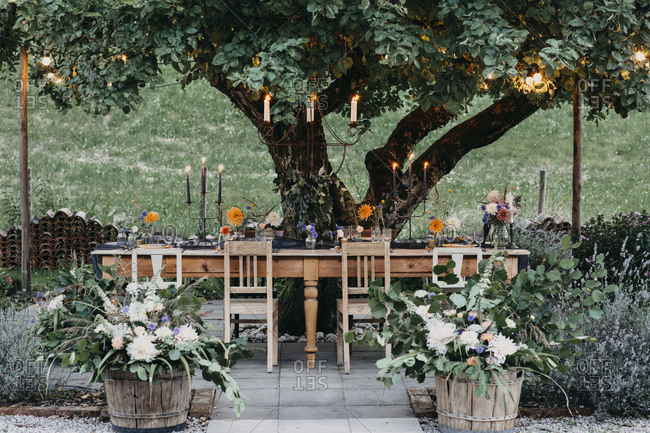 Festive laid table with candles under a tree