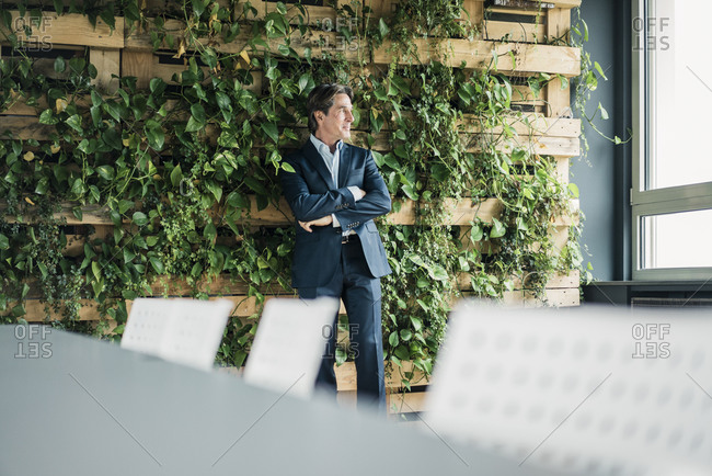 Businessman in green office looking out of window