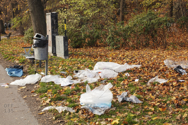High angle view of plastic waste littered in park during autumn