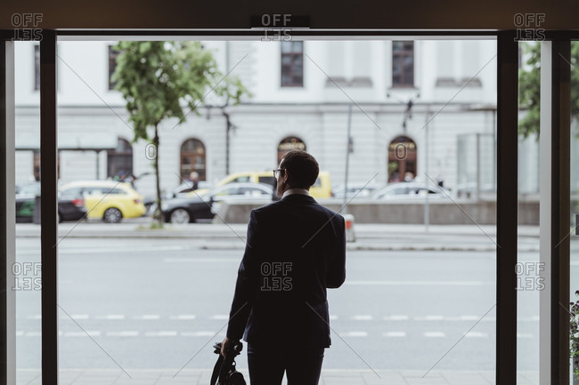 Rear view of businessman with bag looking away in city