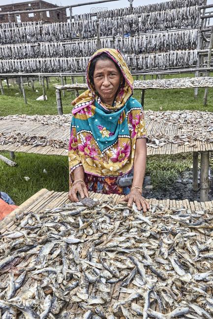 Chittagong, Bangladesh - May 11, 2013: Portrait of a senior woman working at a dry fish factory on Karnaphuli River bank