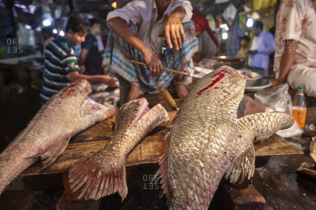Man selling fresh fish at the Chittagong Asadganj Fish Market, Bangladesh